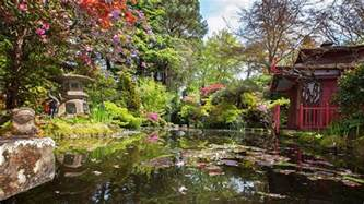 compton acres in dorset celebrates japanese horticulture