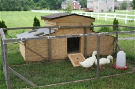 diy duck house plans 8 inspiring chicken run plans you can build easily the poultry guide