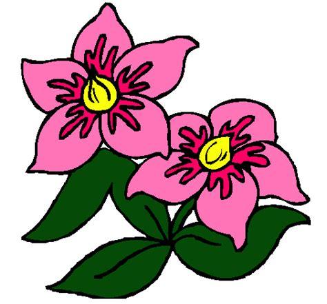imagenes de flores dibujos dibujo de flores pintado por virtudes en dibujos net el