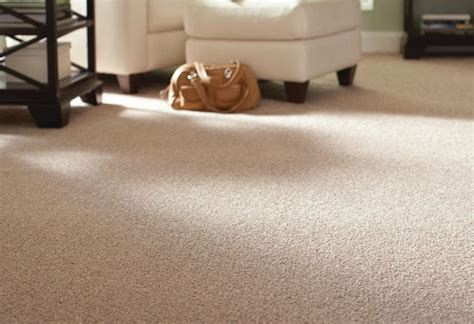 best carpet type for living room living room
