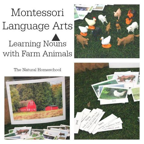 montessori grammar printable 17 best images about montessori inspired phonics all free