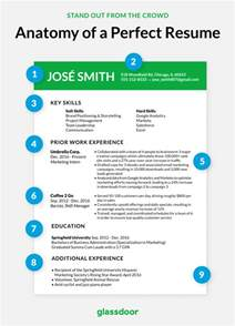 this is what the perfect cv looks like
