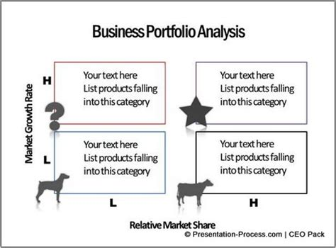 portfolio analysis template chapter 2 activities