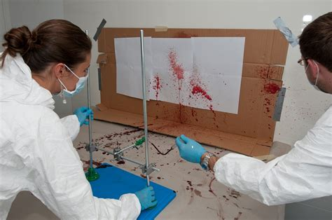 bloodstain pattern analysis lab basic bloodstain analysis course