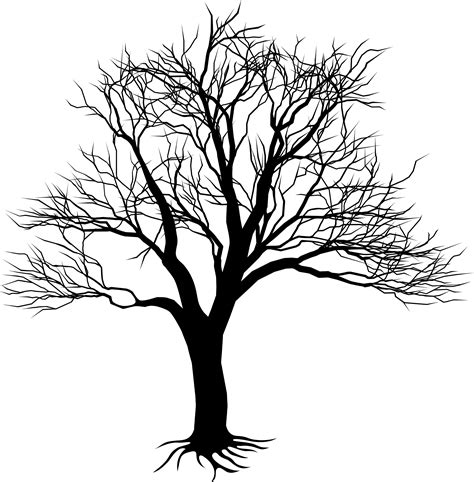 draw a tree drawing of tree on wall clipart best