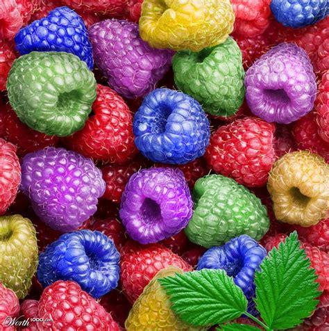 raspberry colorful raspberries 169 shorra via worth1000