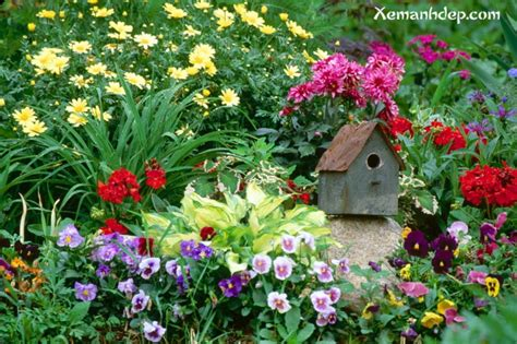 Images Of Beautiful Flower Garden Beautiful Flower Garden Amazing Wallpapers