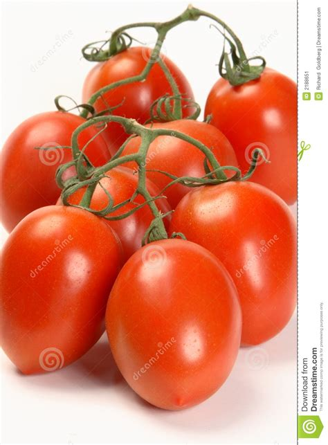 vine plum tomatoes stock image image of healthy