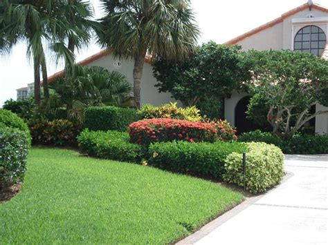 front landscaping ideas with croton plants pdf