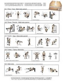 Workout routine b healthy fitness full body training plan gym