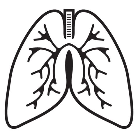 clipart lungs lung clipart clipground