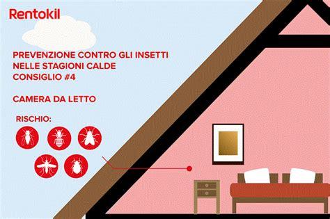 insetti letto insetti in casa e insetti estivi rentokil italia