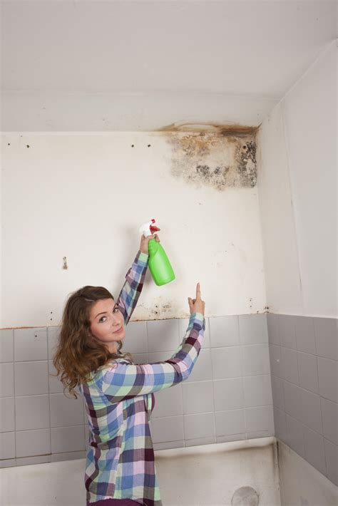 will house insurance cover mold homeowners insurance and mold what is covered homeowners insurance blog