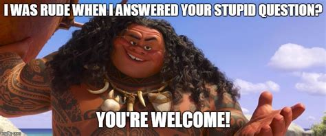 Your Welcome Meme - maui you re welcome meme pictures to pin on pinterest