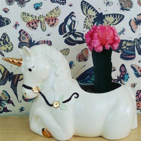 unicorn home decor shop for unicorn home decor on polyvore unicorn planter room decor kitch from hellounicornshop