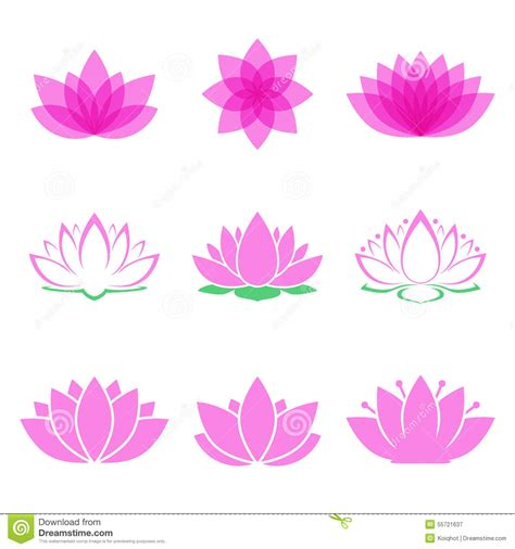 Set Lotus lotus flower set stock vector image 55721637