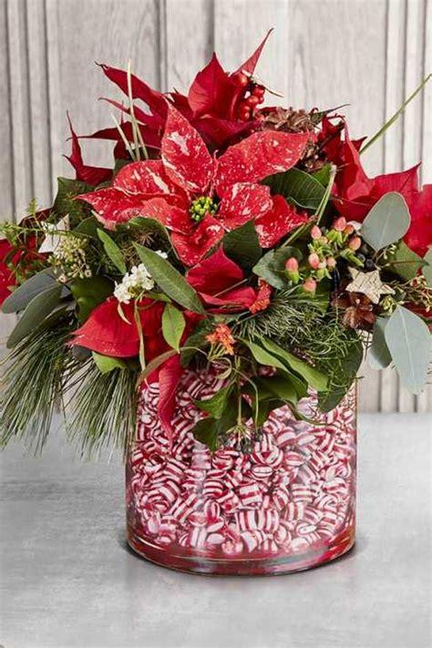 vaso per albero di natale stella di natale come usarla per le decorazioni natalizie