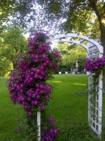 What Does Trellis Mean Tips For A Magical Front Yard Flower Garden Soothing