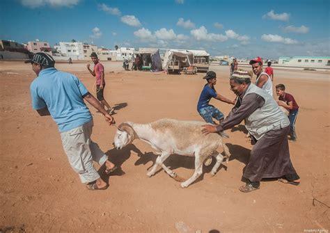 eid al adha in morocco middle east monitor