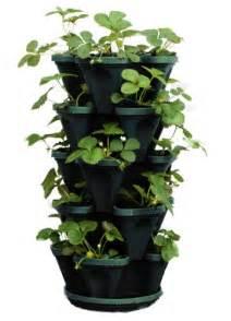 5 tier stackable strawberry herb flower amp vegetable planter vertical gardening indoor