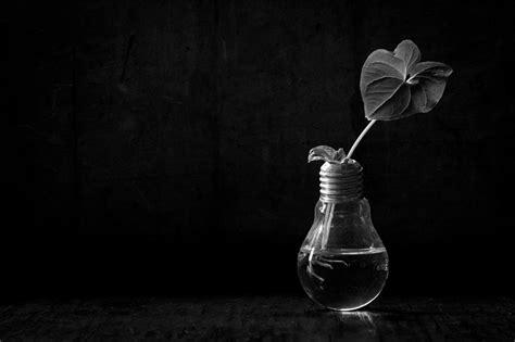 imagenes a blanco y negro de felicidad fotograf 237 as de laura rivera bodegones blanco y negro