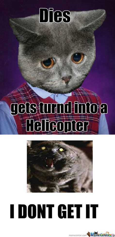 Bad Kitty Meme - bad luck cat meme www imgkid com the image kid has it