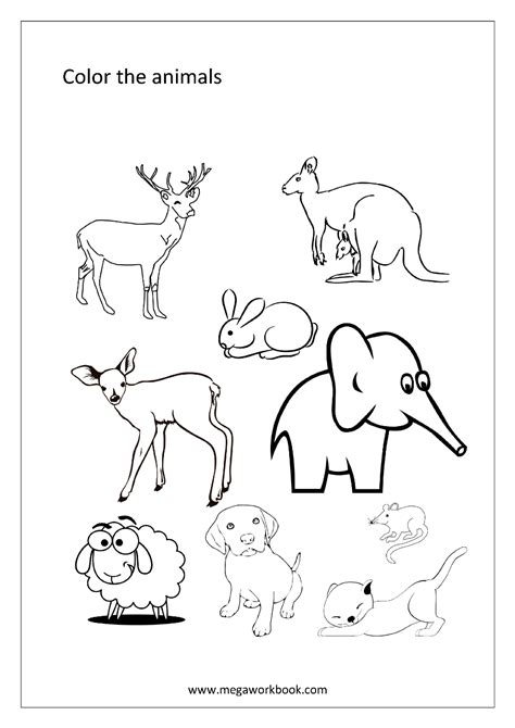 animal coloring sheets free coloring sheets animals water creaturs insects