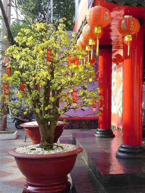 tet holiday in vietnam timeanddatecom tet holiday in viet nam essayhelp473 web fc2 com
