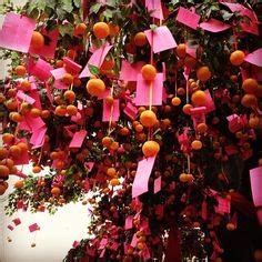 new year wishing tree tradition 1000 images about hong kong new year on
