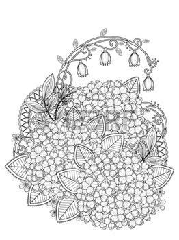 coloring pages print: graceful hydrangea coloring page in