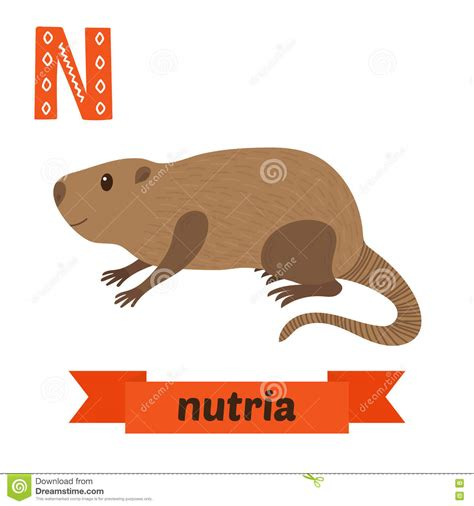 nutria  letter cute children animal alphabet  vector