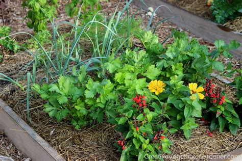tips and ideas for small gardens garden season cubtab creative vegetable gardener 5 tips for getting the most