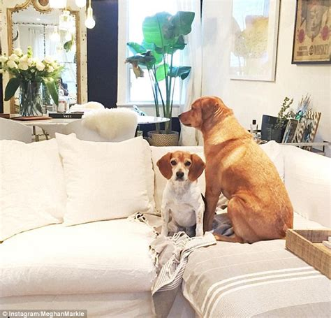california home and design instagram step inside meghan markle s toronto home daily mail online