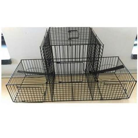 gabbia trappola le migliori gabiette per uccelli