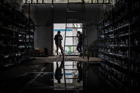 bitcoin china china bitcoin 008 d 252 nya halleri
