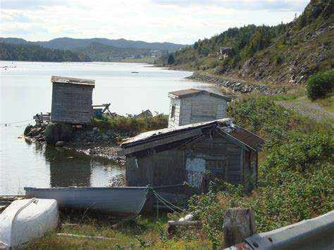 Newfoundland Shed by 43 Best Nl Sheds And Barns Images On Children