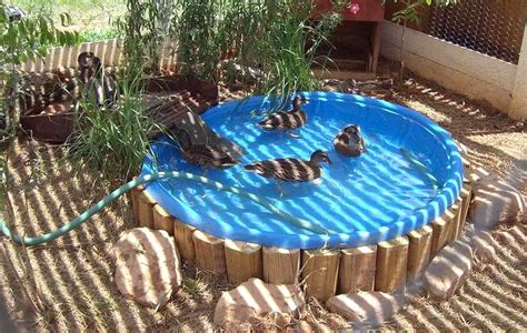 diy inground kiddie pool how to build small swimming pool