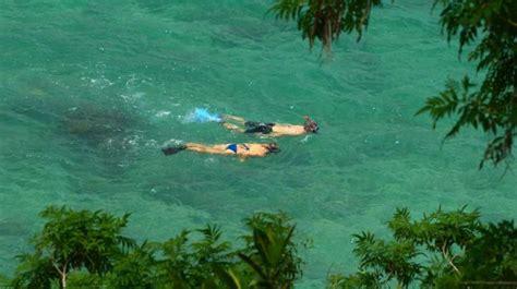 Find In Jamaica Find The Best Snorkeling In Jamaica Snorkeling In Jamaica South Coast