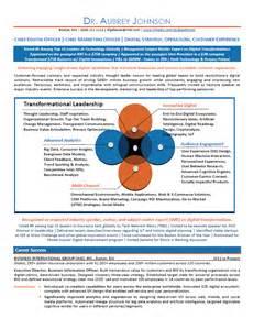 Chief Marketing Officer Sle Resume by Sle Cv Chief Marketing Officer Buy Original Essay