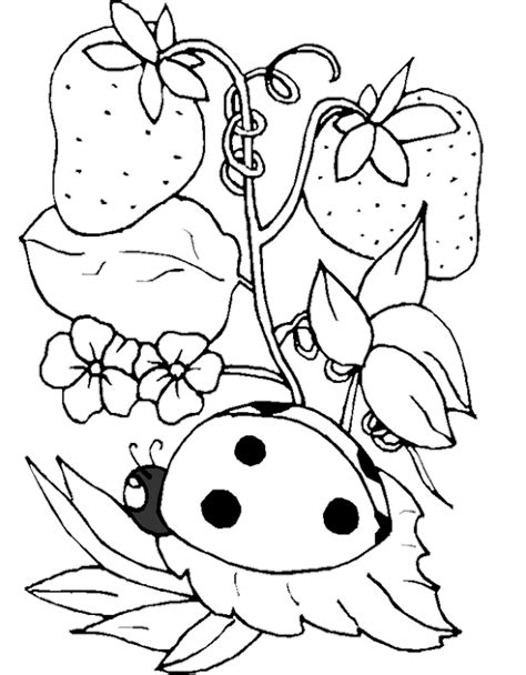 ladybug coloring pages online ladybug coloring page az coloring pages