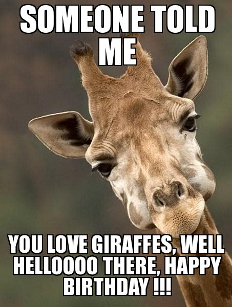 Giraffe Birthday Meme - sarcastic giraffe someone told me you love giraffes