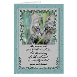 pet sympathy loss of cat tabby in the grass greeting card zazzle