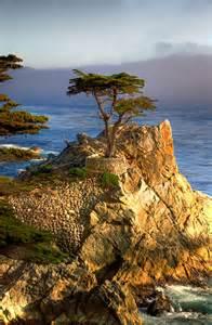 California Wiki Pebble California