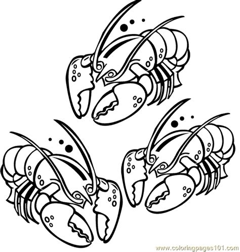 lob star coloring page lobster001 6 coloring page free lobster coloring pages