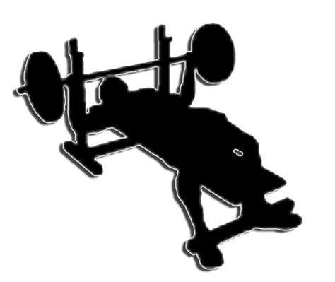 log bench press bench press crossfit massapequa
