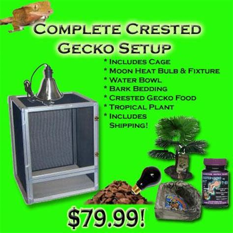 Gecko Heat L by Crested Gecko Complete Cage Setup