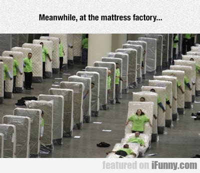 The Mattress Factory Meanwhile At The Mattress Factory Ifunny