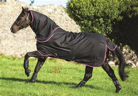 Medium Turnout Rug Sale by Horseware Amigo 6 Plus Medium Turnout Rug Amigo Rug