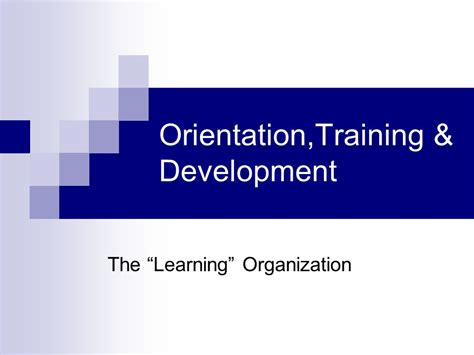 Msu Executive Mba Orientation by Orientation Development Ppt
