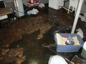 sewage in basement sewage cleanup buffalo ny sewer backup cleaning service
